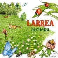 Larrea bizileku