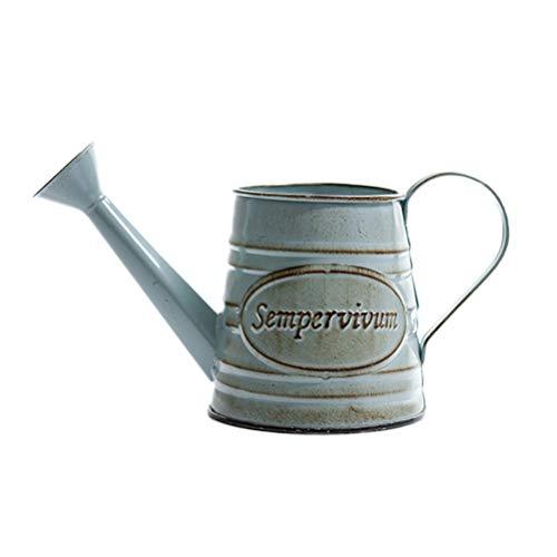 BESPORTBLE Antike französische Stil Land rustikale Primitive Krug Vase Metall Krug Blumenvase Hochzeit Dekoration (Land Krug)