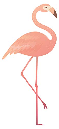 Wandtattoo Wandsticker Graziler Flamingo cooles Tiermotiv zum Kleben Vogelmotiv - Cool Flamingos
