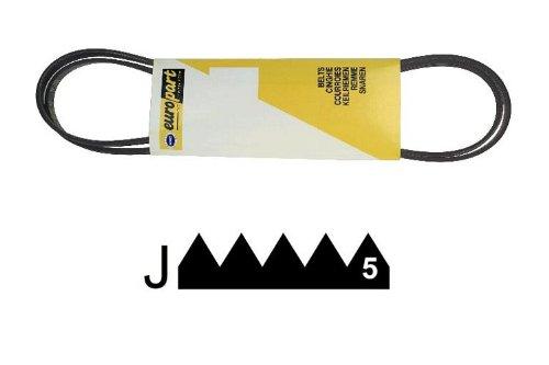 ELECTROLUX - COURROIE 1196 J5 MAEL - D319079