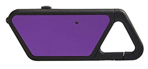 ASP Poly Sapphire, USB Rechargeable Mini LED Flashlight, 20 Lumens, Polymer Frame with Clip, Violet Asp Sapphire Usb
