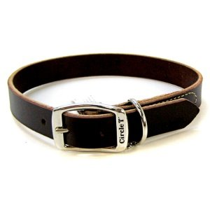 Coastal Pet Products Circle T Leather Town Dog Collar, 3/4 x 20, Latigo by Coastal Pet