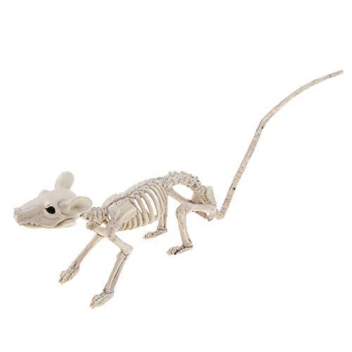 FLAMEER Halloween Ratten Skelett Tier Knochen ALS Dekoration und Requisiten