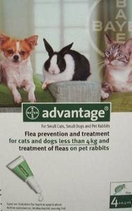 Advantage 40 for Small Cats, Dogs, and Rabbits - 4 pipettes