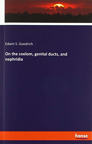 On the coelom, genital ducts, and nephridia