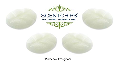 Feste Feiern Duftwachs Scentchips I 24 Teile Duft Melts Frangipani Plumeria Soja Wachs Tards Aromalampe Duftlampe Diffuser
