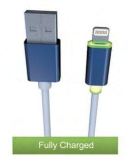 MZ Lightning Cable Smart