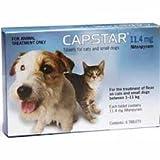 Capstar zur Behandlung von Flohbefall bei Hunden und Katzen zwischen 1 und 11kg, gut verträglich und kombinierbar, Spar-Set 3x6Tabletten