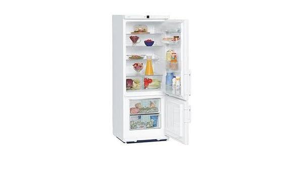 Mini Kühlschrank Liebherr : Liebherr kühlschrank cup amazon elektro großgeräte