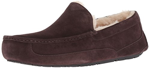 UGG Ascot Slipper 2019 Espresso, 42 (Ugg Lammfell Care Kit)