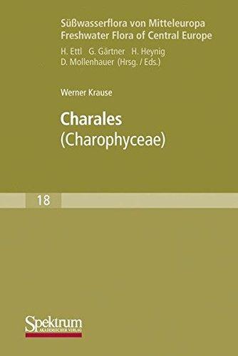 Süßwasserflora Von Mitteleuropa: Charales: Charophyceae (German Edition)