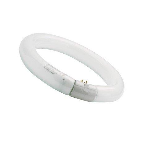 sylvania-0001962-tubo-fluorescente-circular-22w-865-tr