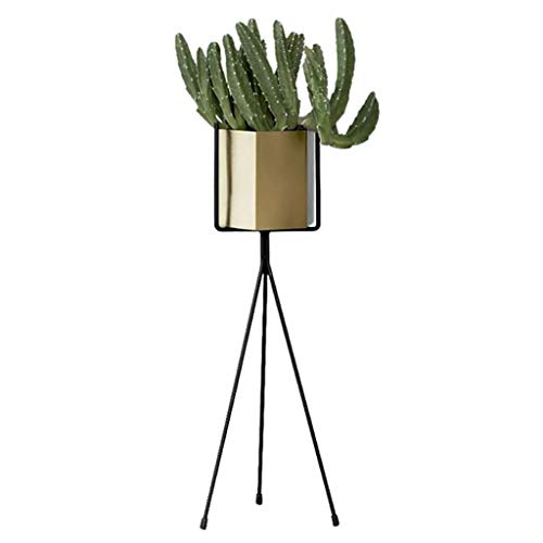 GQSHK Support à Fleurs nordique en fer forgé Support de Fleurs charnu, présentoir à Fleurs vert/Blanc multicouche au sol (Taille: 25 * 65cm + 30 * 75cm) - Au Die Blanc