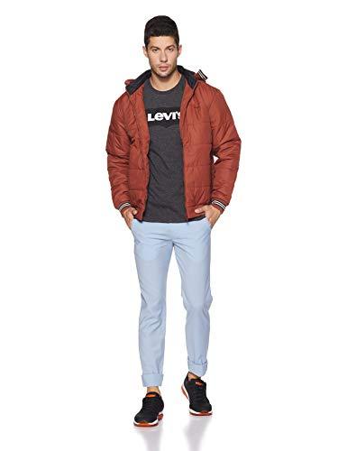 Levi's Men's Printed Regular Fit T-Shirt (16960-0234_Black_M)