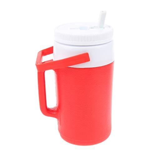 perfk Wasserkrug Wasserkanne Krug Kunststoff Krug für Camping, Wandern, Picknick, BBQ - Silber
