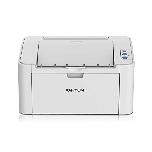 8. Pantum P2200 Laserjet Printer