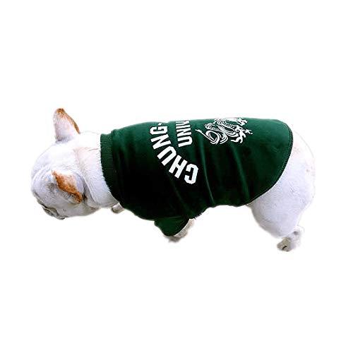 PZSSXDZW Haustierhundekostüm 2019 Frühling und Sommer Lässige Haustierkleidung Zweibeiniger Pullover,Green,XS (Halloween Kostüme Billig Maskottchen)