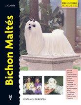 Bichon Maltés (Excellence)