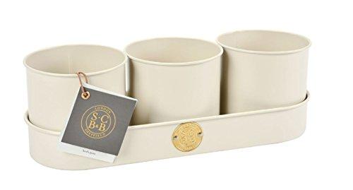 Burgon & Ball Sophie Conran Galvanised Steel Set of 3 Herb Plant Pots in Buttermilk Cream