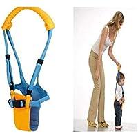 QHDZ Encantador Práctica Toddler Tool Baby Walking Assistant (Color : Azul, tamaño : 67x10.5cm)