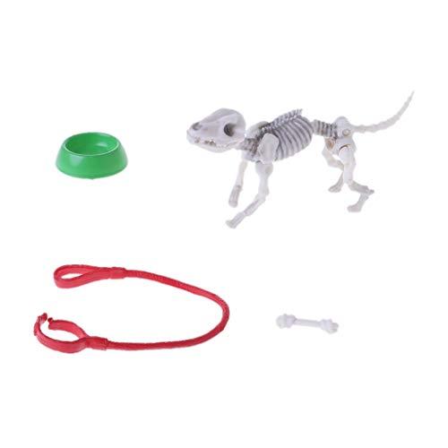 . Bones Zubehör Skeleton Menschliches Modell Schädel Figur Spielzeug Halloween Handpuppe Lebensmittel Szene Möbel Zubehör Hund ()
