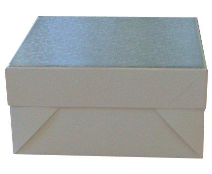 2 x Boîtes à gâteau Blanches, 30,5 x 30,5 x 15,2 cm et 5,1 x 30,5 cm, carrées, Argentées, boîtes pour gâteaux en carton, double Épaisseur, 3 mm