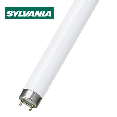 sylvania-18-15w-c830-warm-white
