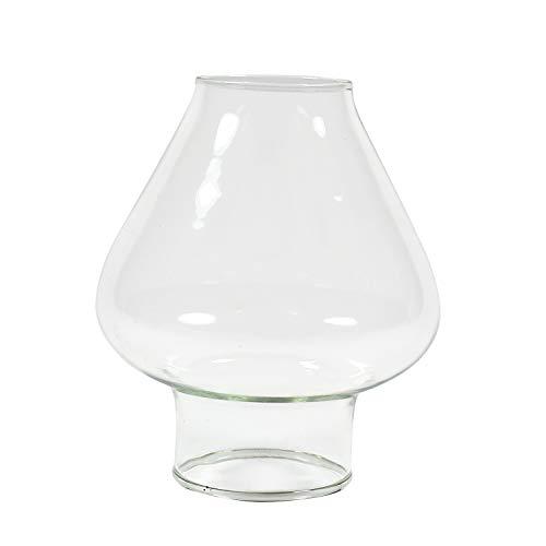 Delite Glaszylinder TULPE transparent, unterer Aussendurchmesser 30 mm, Höhe 68 mm, Bauchdurchmesser 60 mm, für Öllampe Elbe 1 und andere Petroleumlampen (Glaszylinder Für öllampe)