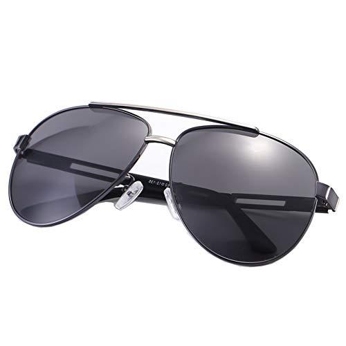Thirteen Farbwechsel Sonnenbrillen Male Polarized Tag Und Nacht Dual-Use-Retro-Herren-Fahrer Brille Frosch Spiegel HD Polarized Light Easy Driving (Farbe : Gun frame)
