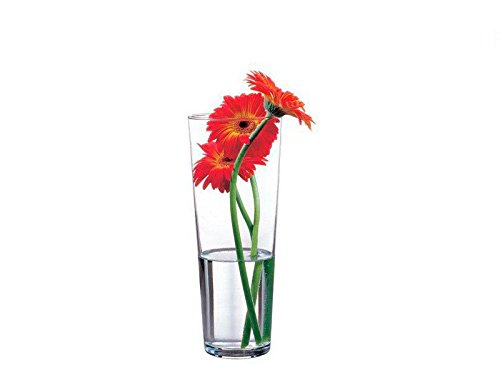 "Pasabahce 43177 – Glasvase \""Flora\"", elegant, hoch, zeitlos, Höhe 26cm"