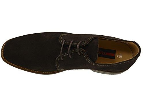 LLoyd hel chaussures daim (marron) Marron