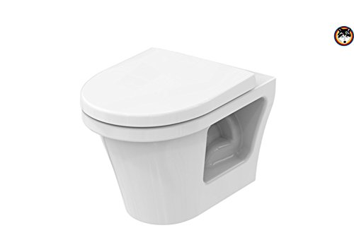 TOTO CF Public Wand Tiefspül WC spülrandlos CW132Y CeFiONtect + WC-Sitz mit SoftClose (Toto Wc-schüssel)