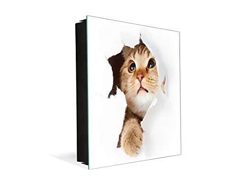Concept Crystal Schlüsselkasten zur Wandmontage mit dekorativer Magnettafel K02 Katze in Papier Crystal Papier