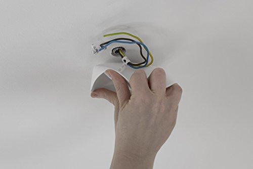 preisvergleich cablecup 01020 hid plastik wei willbilliger. Black Bedroom Furniture Sets. Home Design Ideas