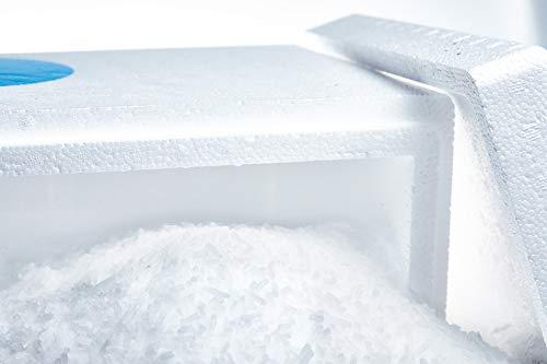 Trockeneis 5kg Pellets | in praktischer Thermobox | ideal zum Kühlen und für Nebeleffekte | inkl. Express Versand nur bei Trockeneis.shop