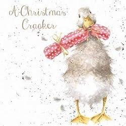 Wrendale Designs Weihnachtskarten (WRE6423), Motiv: Weihnachts-Cracker, Box mit 8 Stück