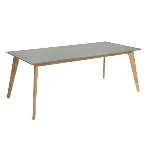 Invicta Interior Moderner Esstisch Scandinavia 160cm grau Eiche Scandi Design Konferenztisch Holztisch Küchentisch - Eiche Konferenztisch