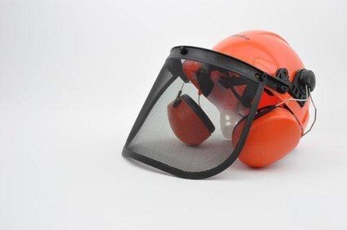 Forsthelm, mit Gehörschutz, Gesichtschutz