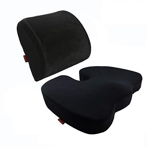 Curious Fish Memory Foam Seat Cushion Lumbar Back Support Pillow Lumbar Respaldo Almohada Cojín terapéutico...