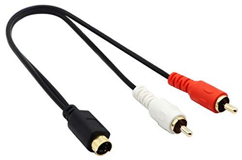 CGTime S-Video 4-poliger Mini-DIN-Y-Splitterkabel vergoldet Combo 4-polig Mini DIN S-Video Stecker auf 2 Cinch-Stecker Audio Y-Splitter Verlängerungskabel (25 cm) 25CM 25 S-video S-video