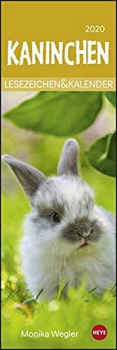 Kaninchen Lesezeichen & Kalender Kalender 2020