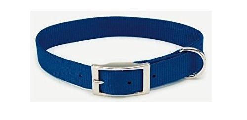 Coastal Products Single Ply Collar Steel Tongue Buckle Nylon Blue 3/4