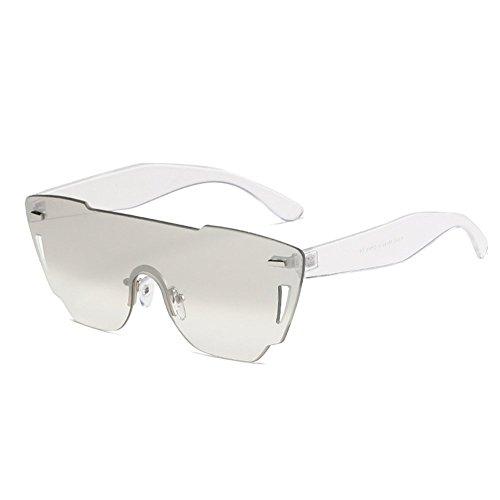 ZYPMM 2017 Europa und die Vereinigten Staaten Mode Damen Sonnenbrille neue Strand Brille ozeanischen Film Stück der einzelnen Sonnenbrillen ( Color : Silber )