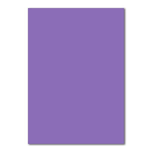 100x DIN A4 Papier Planobogen -Violett - 160 g/m² - 21 x 29,7 cm - Bastelbogen Ton-Papier Fotokarton Bastel-Papier Ton-Karton - FarbenFroh®