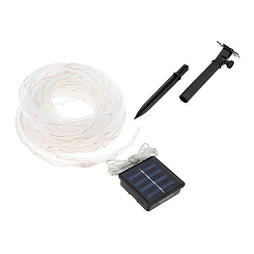 D DOLITY 10m Solarbetriebene lichtschlauch, Wasserdicht - Warm