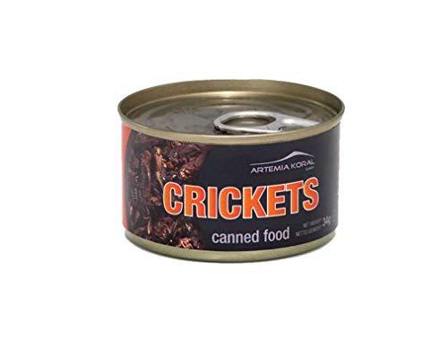 Artemia Konservierte Grillen Gross Canned Crickets Big 34 g Dose 15170 (10-TLG.Set) - Große Grillen