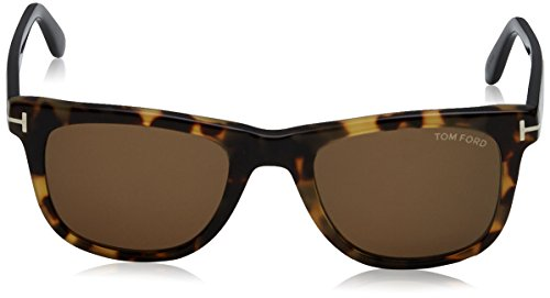 0e083c171921 Tom Ford Leo Wayfarer Sunglasses