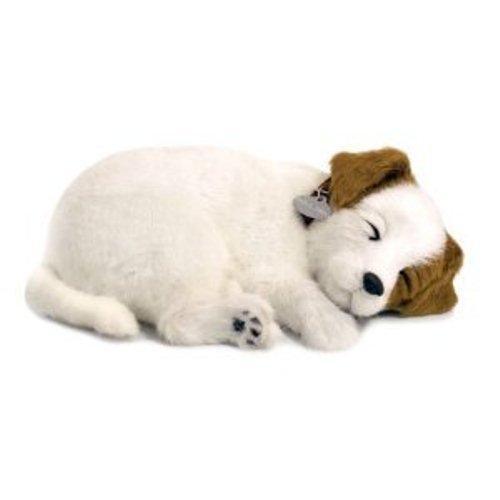 Perfect Petzzz 65409-Plüsch Interactive-Hunde-Jack Russel-Tier, die atmet für wahr-25cm - Weiches Hund Maul