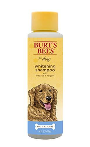 Burt 's Bees für Hunde Whitening Shampoo