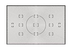 Nikon B SUCHERSCHEIBE F. D2Hs/D2X (ERSATZ) Nikon Focusing Screen
